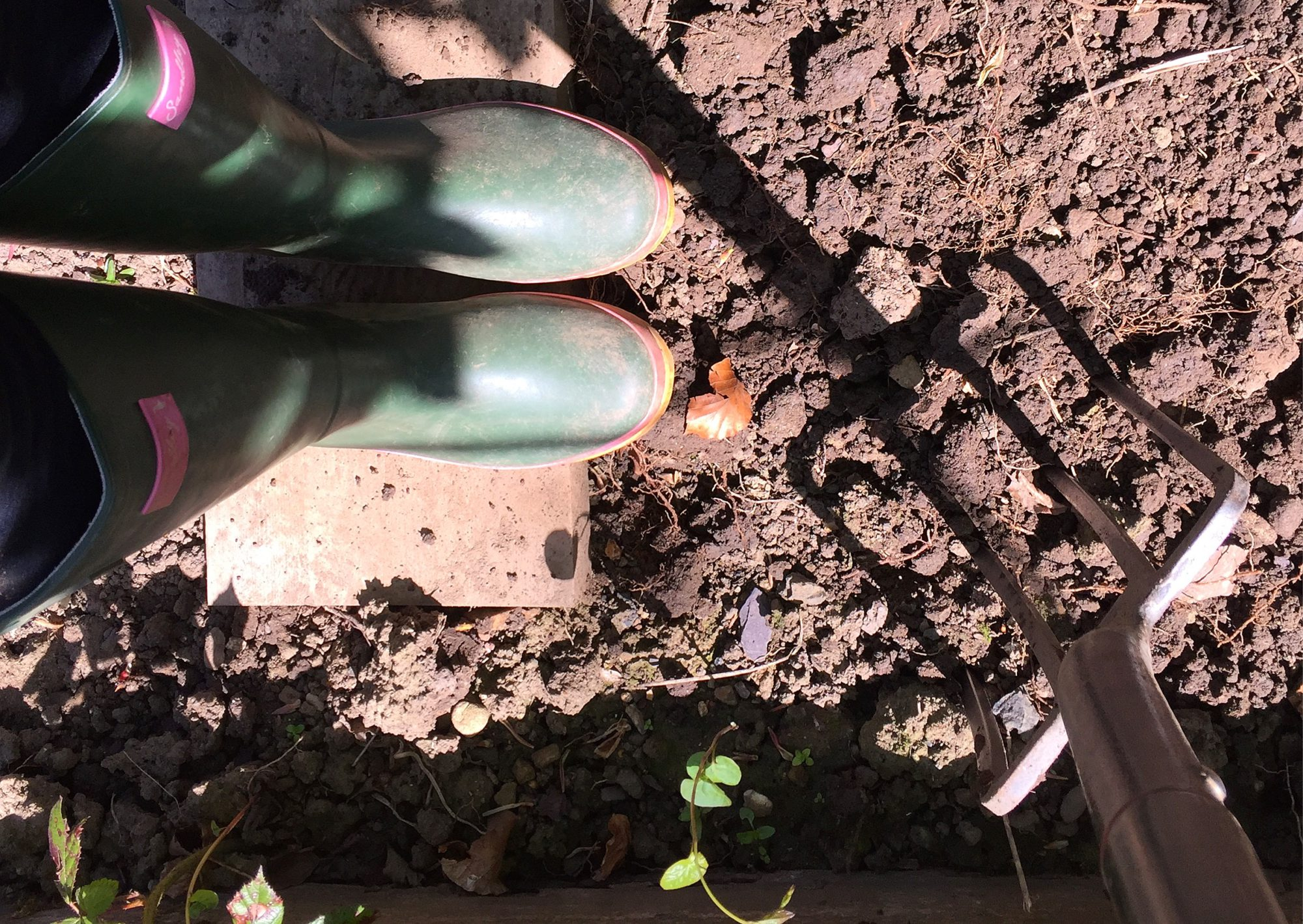 girlinthegreenwellies